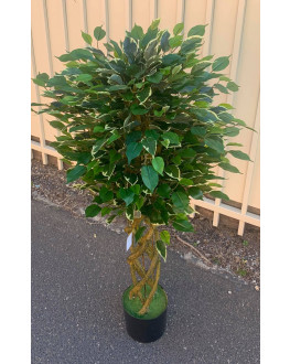 120cm high Artificial Green Ficus Tree Variegated
