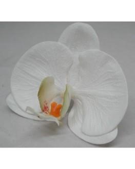 Latex Phalaenopsis Orchid Head White Yellow/green