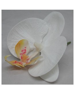Latex Phalaenopsis White/Yellow Orchid Head