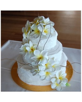 WHITE YELLOW CAKE DECO WITH LATEX FRANGIPANIES