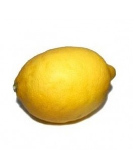 Artificial life size yellow lemon