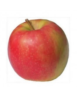 Artificial fruit life size Pink Lady Apples Apple