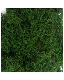 Artficial Green Moss 200g