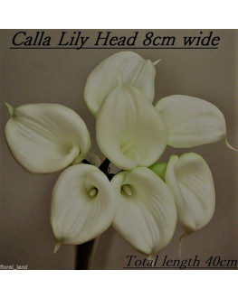 LARGE FLOWER HEAD LATEX WHITE CREAM CALLA LILY POSY 7 HEAD