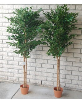 1x 5ft Artificial Green Mini Ficus Tree