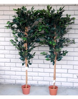 1x Artificial Green Ficus Tree 5ft high