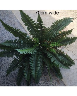 Artificial Green Boston Fern Plant 70cm wide
