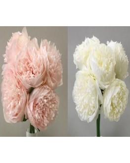 silk  peony peonie pre made bouquet posy 5 x flowers White Pink
