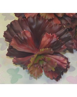 Artificial Burgundy Succulent Plant Cactus Echeveria 10cm high x 12cm wide
