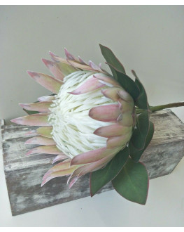 AUSTRALIAN NATIVE FLOWER LATEX BLUSH PINK KING PROTEA FLOWERS WEDDING FAKE STEM